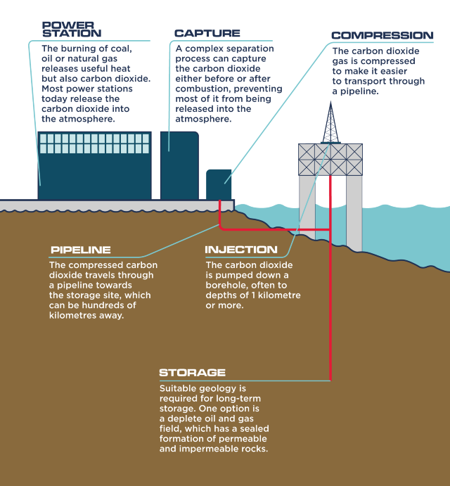 An infographic showing carbon capture and storage