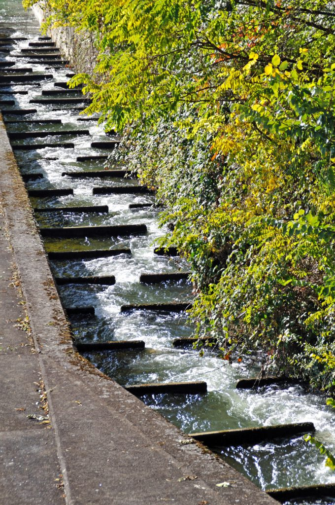 A fish ladder to help salmon swim upstream from a dam